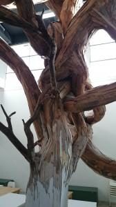 arbre2